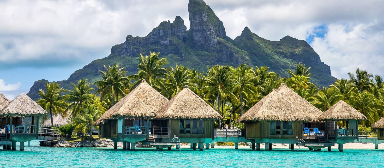 Französisch Polynesien Urlaub Bungalows