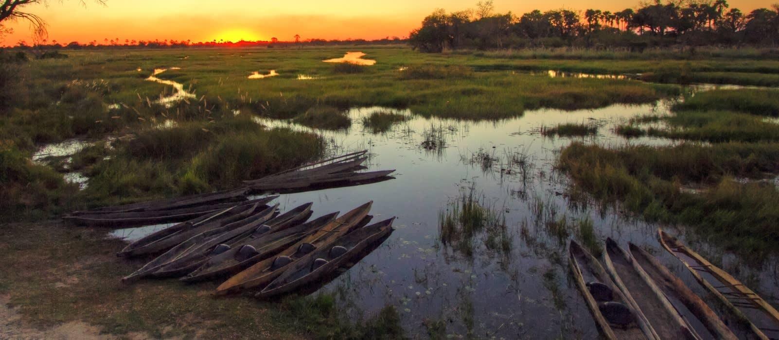 Mokoro Einbaum-Boote im Okavango-Delta