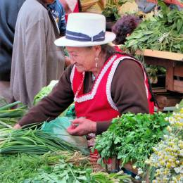 market woman traveling on ecuador