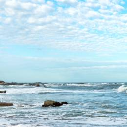 Best Time to Visit Uruguay