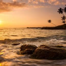 Best time to visit Asia - Sri Lanka