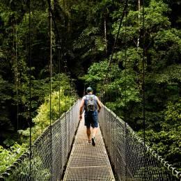 Canopy Walk, Costa Rica, Central America