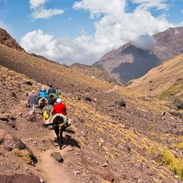 Mule riding on a track in Toubkal National Park at High Atlas mountains, Morocco, North Africa - things to do in Morocco