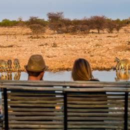 wildlife safari in Namibia