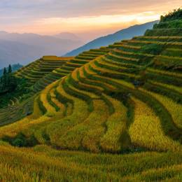 Enchanting Travels China Tours Sunset in the rice terraces of Ping An village, Longheng county, Guangxi Province, China - top things to do in China