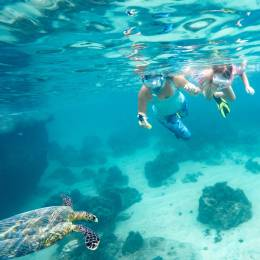 Best time to visit Samoa - snorkelling
