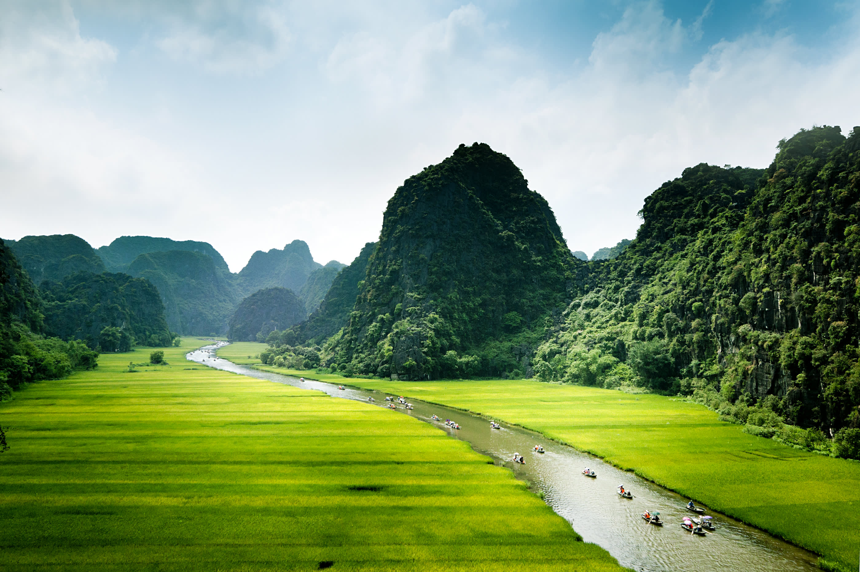 Rice field and river, Ninh Binh, vietnam landscapes