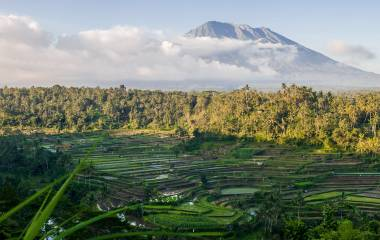 Beautiful volcano Agung and rice fields. Bali. Indonesia. Asia
