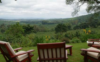 Valley views at Gibb's Farm, Lake Manyara & Ngorongoro Crater, Tanzania