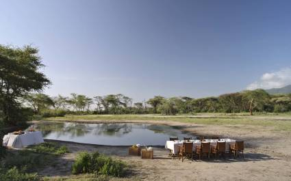 Dinner at waterhole, Tanzania