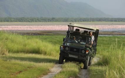 Safari Tour, Tansania