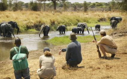 Enchanting-Travels-Tanzania-Tours-Tarangire-Olivers-camp-Walking-