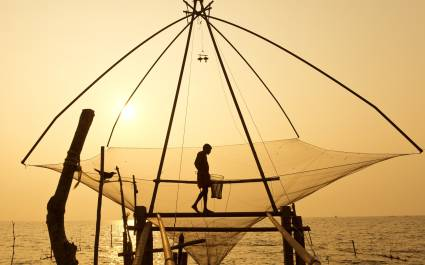 Cochin - things to do in South India