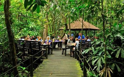Menschen sitzen in der Abai Jungle Lodge in Kinabatangan, Malaysia, beim Frühstück inmitten dichter Vegetation