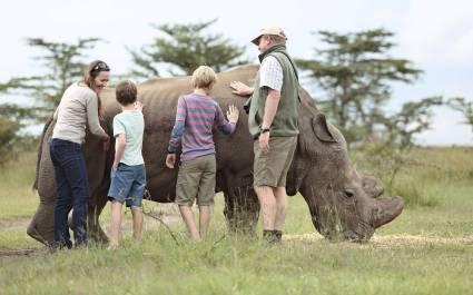 Touristen berühren ein Nashorn im Laikipia-Reservat in Kenia