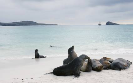 Enchanting-Travels-Ecuador-Galapagos