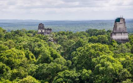 A panoramic view of Tikal National Park and the surrounding Maya Biosphere Reserve.