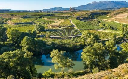 Activities in Spain - La Rioja