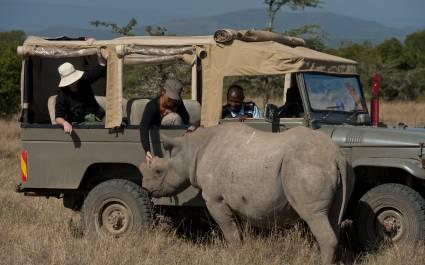Ol Pejeta Rhino - responsible travel 2021