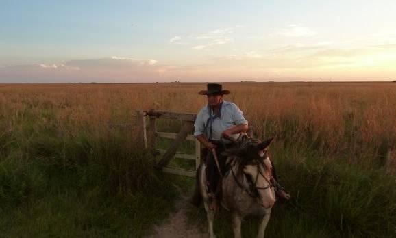 Ausflug mit dem Pferd in der Natur