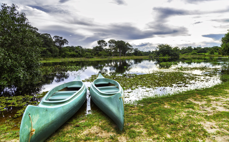 Das Sumpfgebiet Pantanal