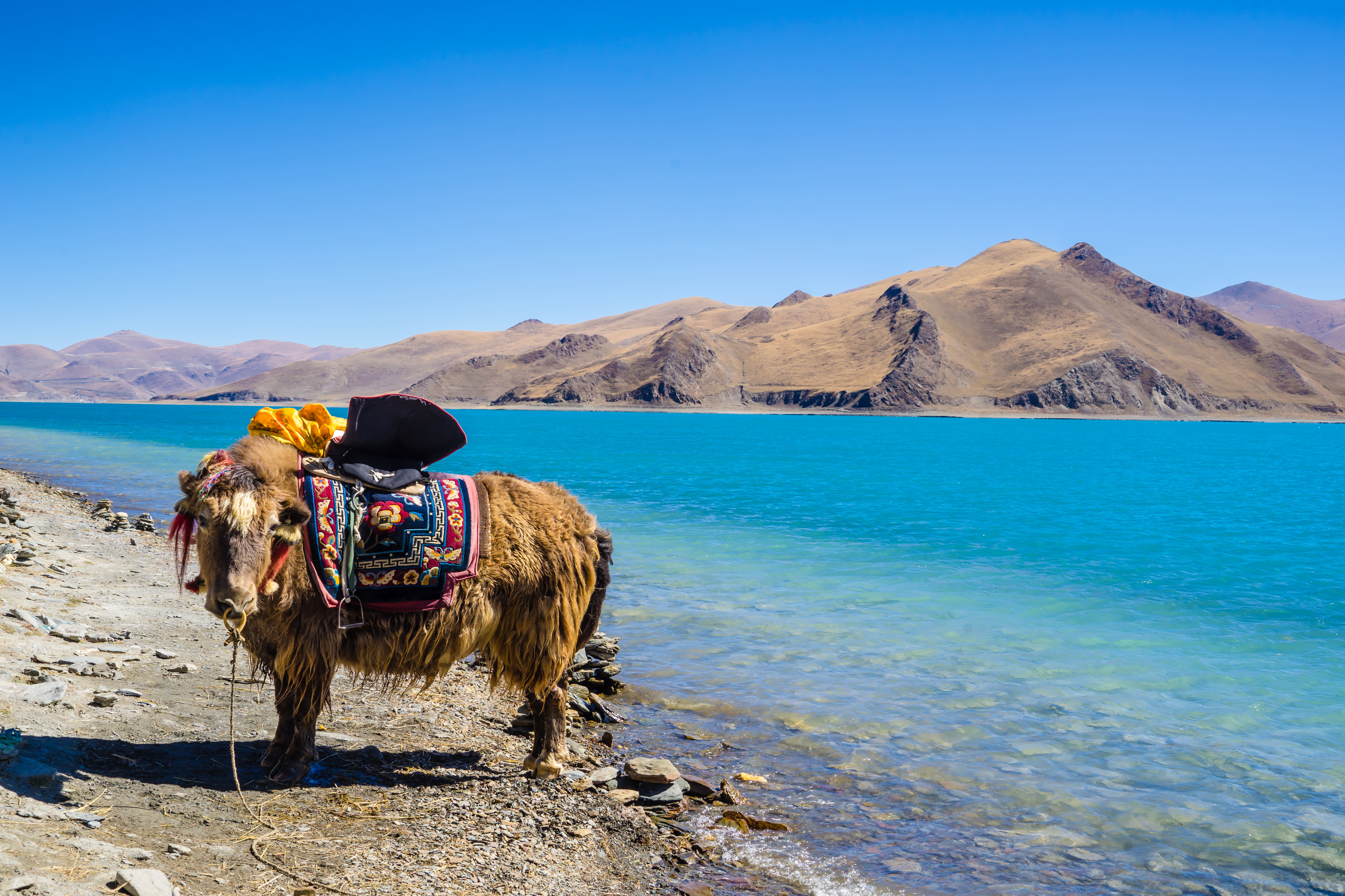 Yamdrok See in Tibet