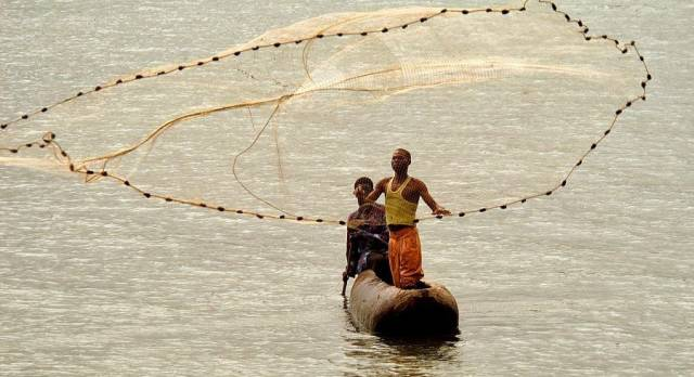 Fishermen In Malawi Catching fresh fish