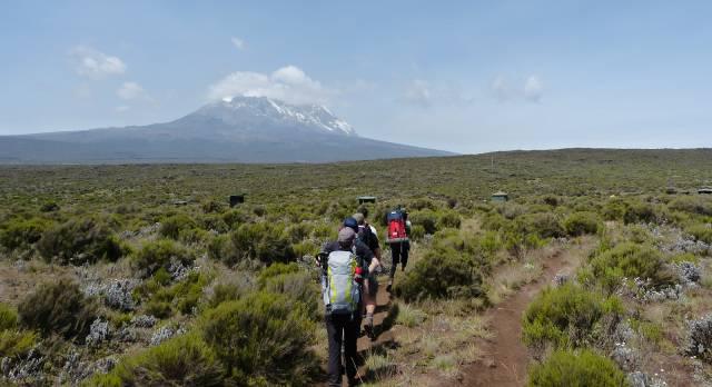 Wanderer auf dem Weg zum Kilimanjaro