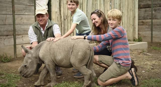 Eine Familie bestehend aus Mutter, Vater, Tochter und Sohn streicheln ein kleines Nashorn
