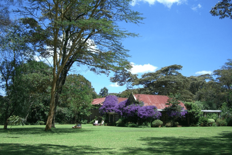 Ngong Dairy - best places to visit in 2019