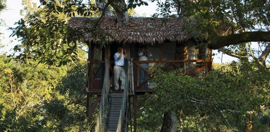 Beobachten Sie auf der Aussichtsplattform, wie die letzten Sonnenstrahlen den Dschungel in ein goldenes Licht tauchen