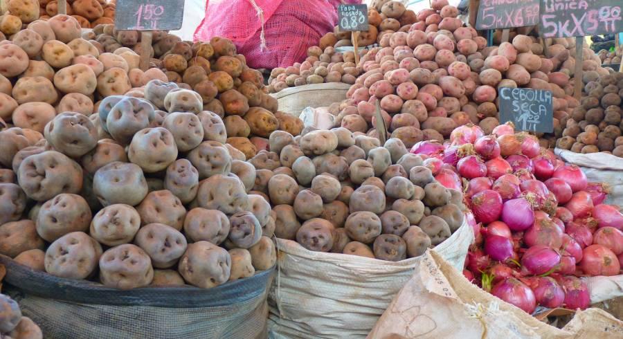 Marktstand in Lima mit Kartoffeln