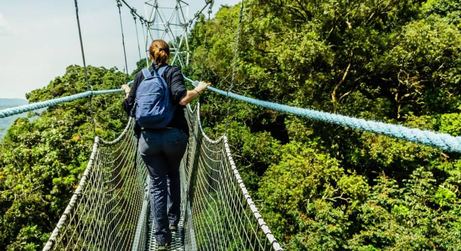 Canopy walk at Nyungwe in Rwanda