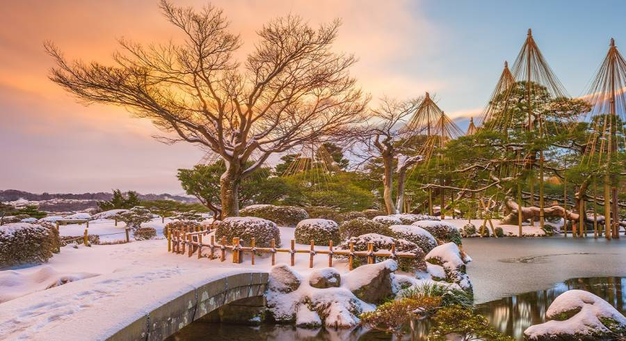 Traveling to Japan: See Our Insider Experiences