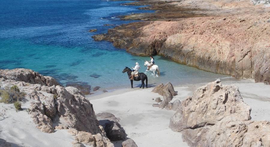Bahia Bustamante in Argentina: Where few tread
