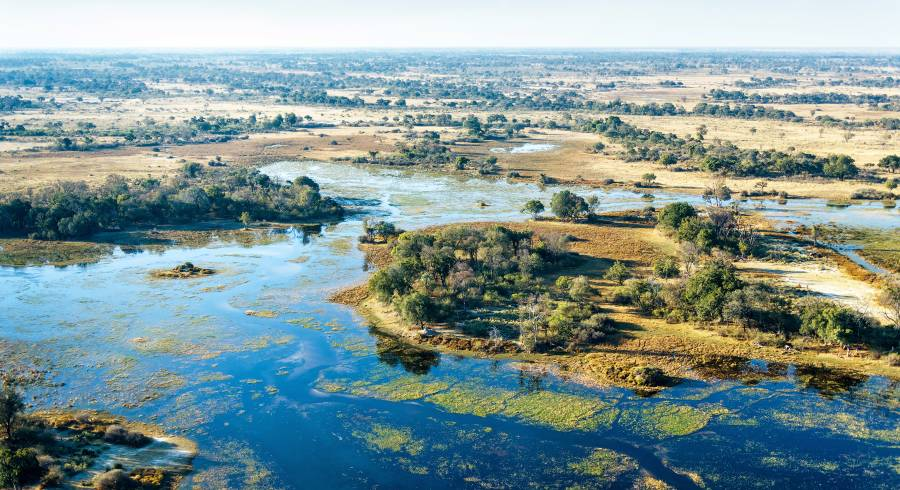 Floodplains of the Okavango