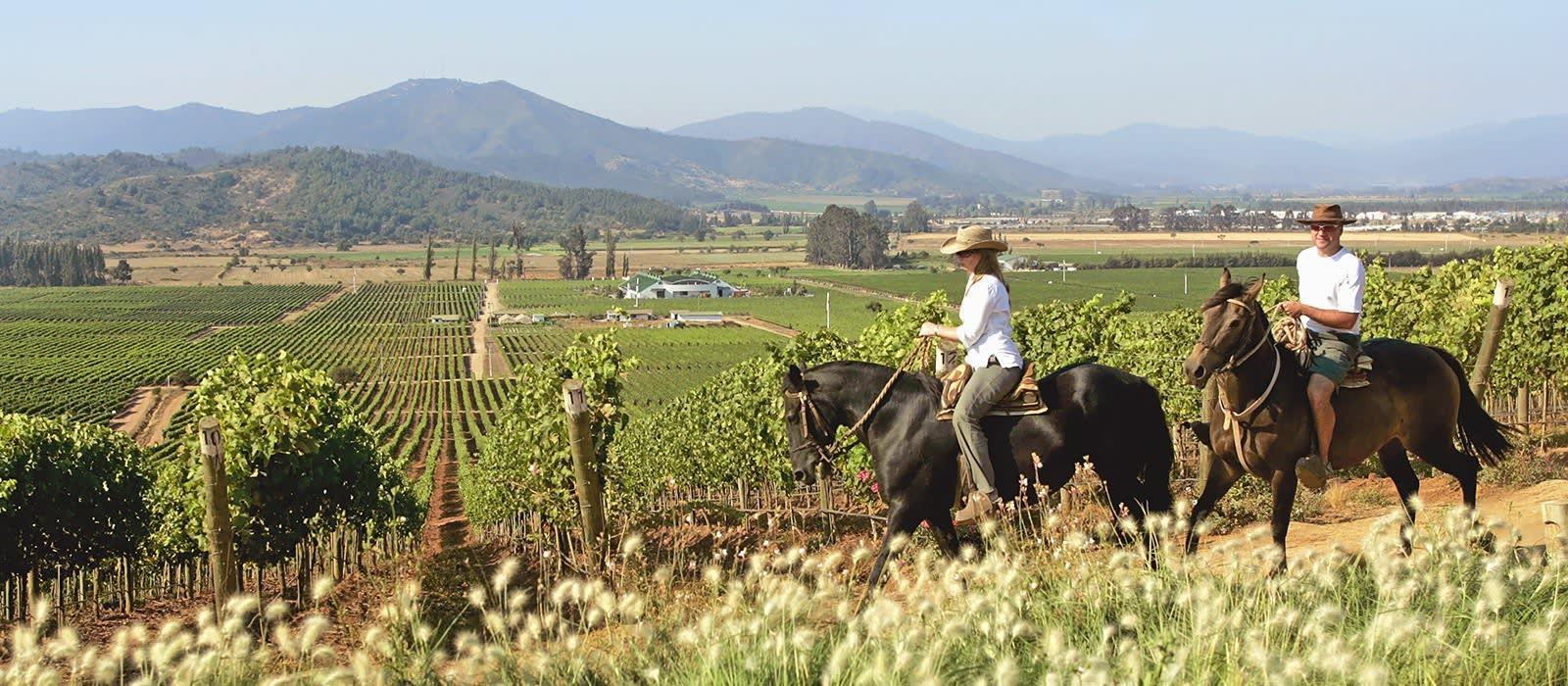 Chile – Seenregion und Weinland Urlaub 1