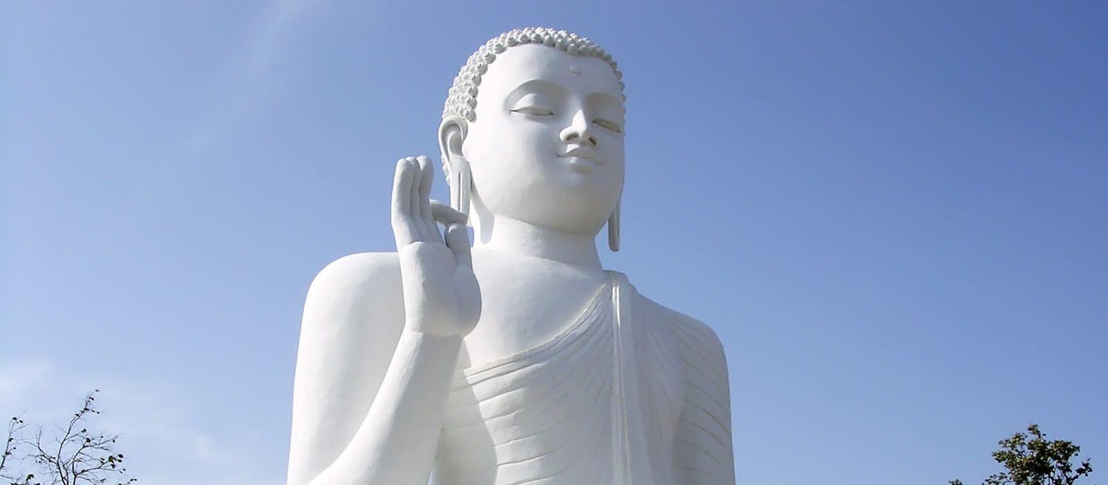 Tempel und Tee – Sri Lankas schönste Seiten Urlaub 1