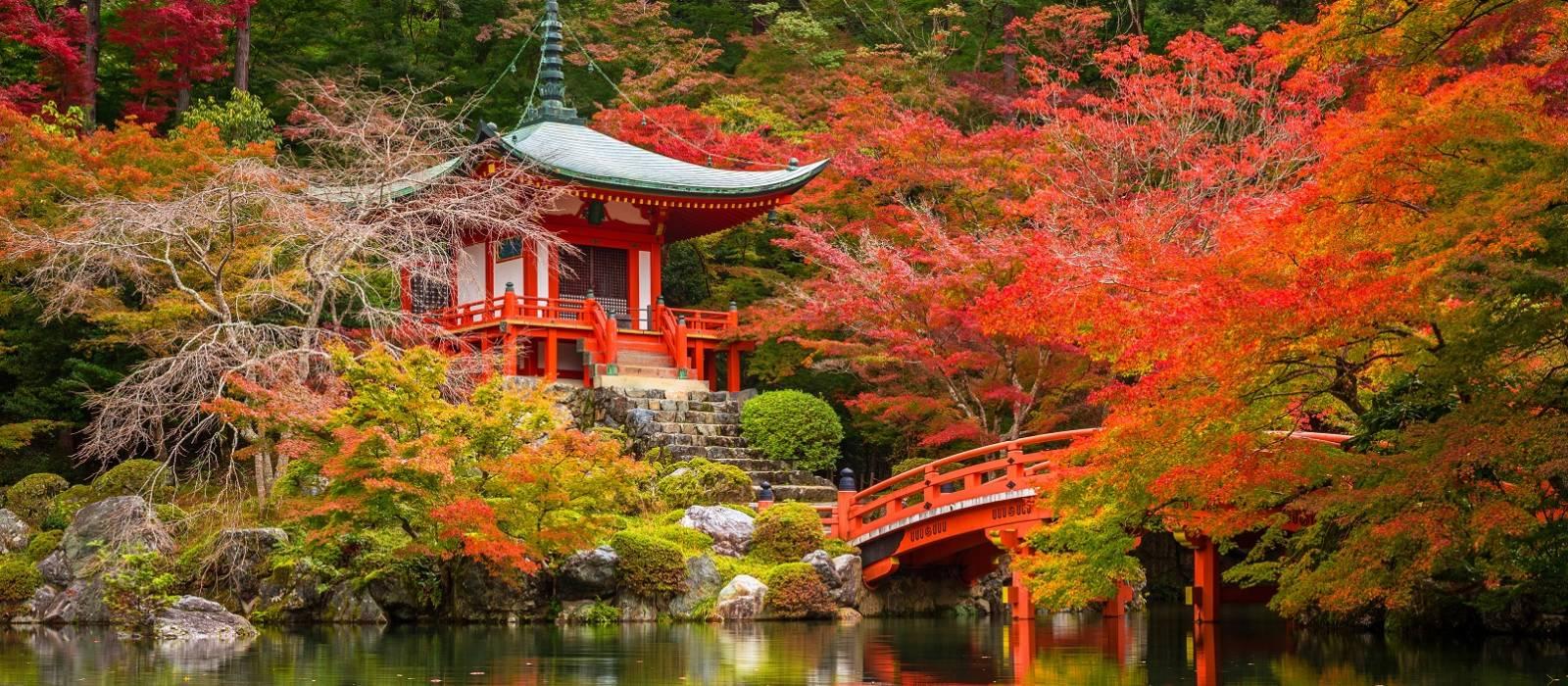 Luxury Japan and Mount Fuji Tour Trip 1