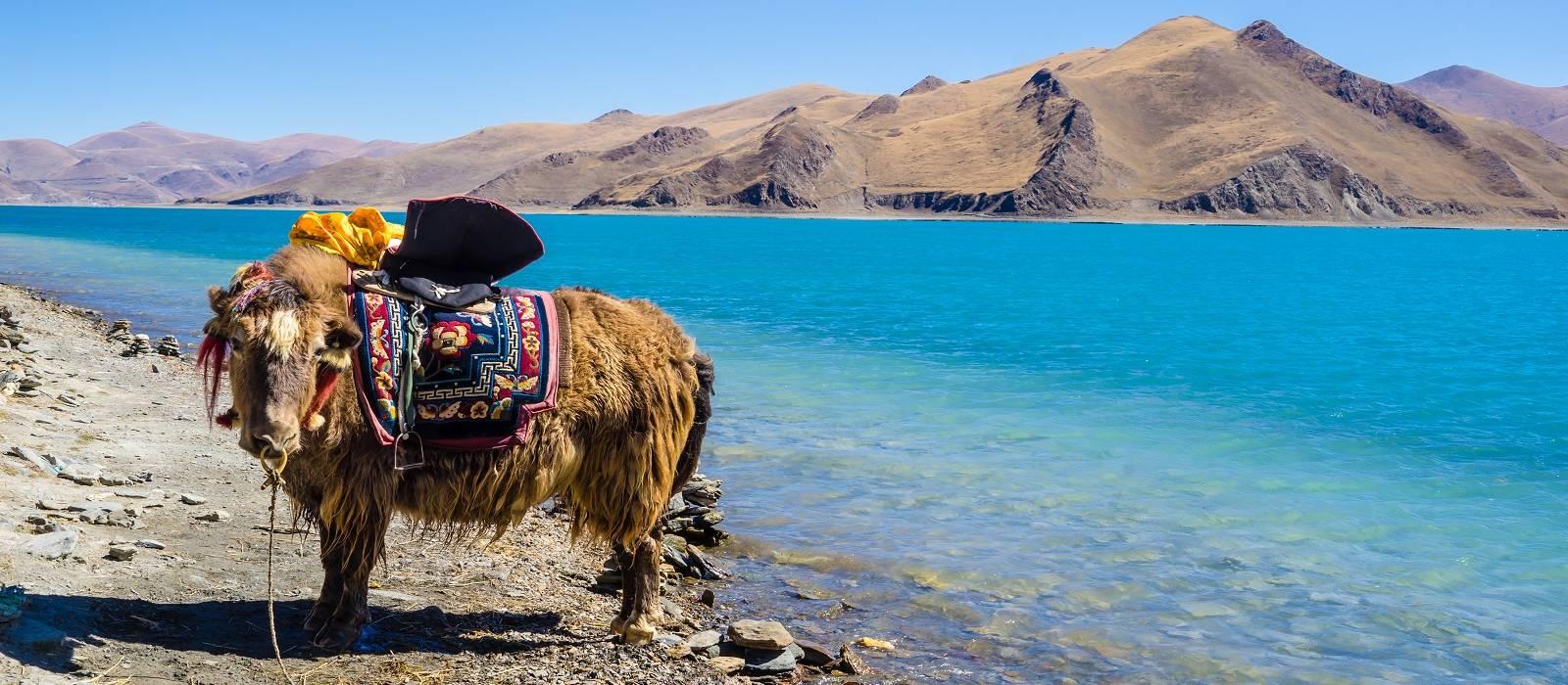 Roof of the World – Kathmandu and Lhasa Tour Trip 1