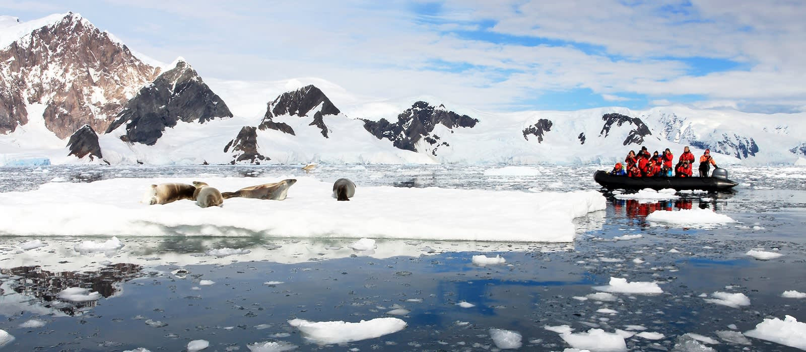Southern Latitudes, Landscapes and Wildlife Tour Trip 1