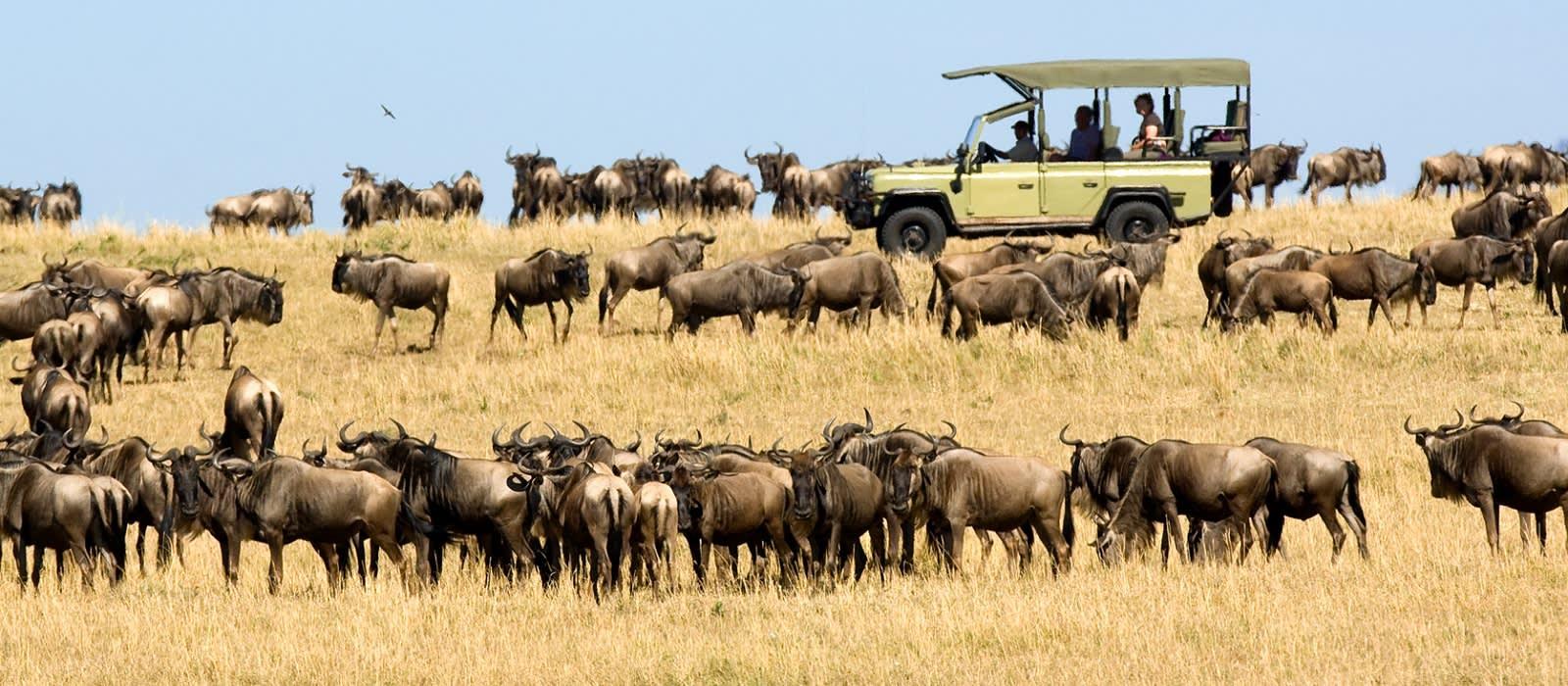 Tansania – die wilden Schätze des Nordens Urlaub 1