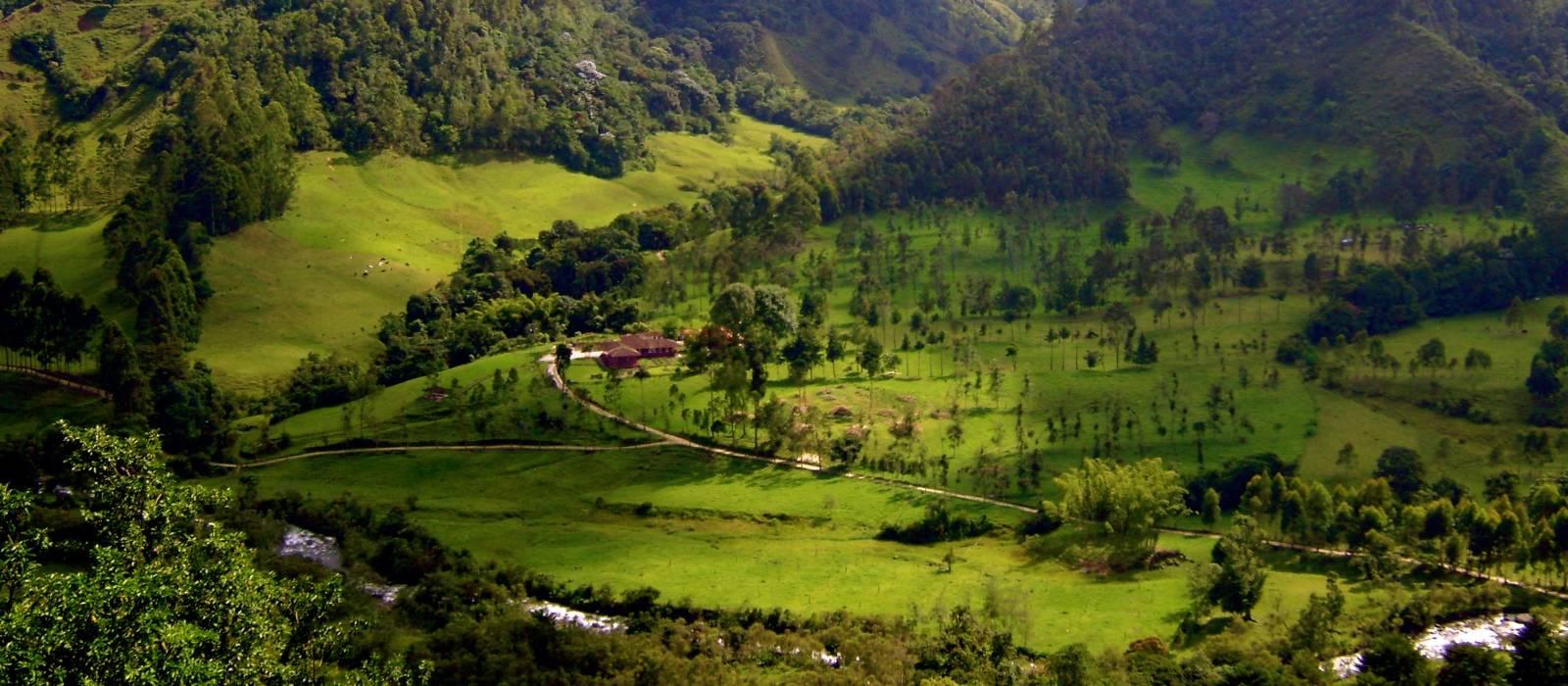 Kolumbien vom Feinsten – Cartagena, Kaffeeregion und Isla Baru Urlaub 1