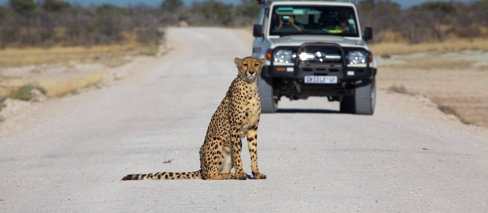 Road Trip: Desert Adventure, Waterfalls and Safari Magic Tour Trip 1