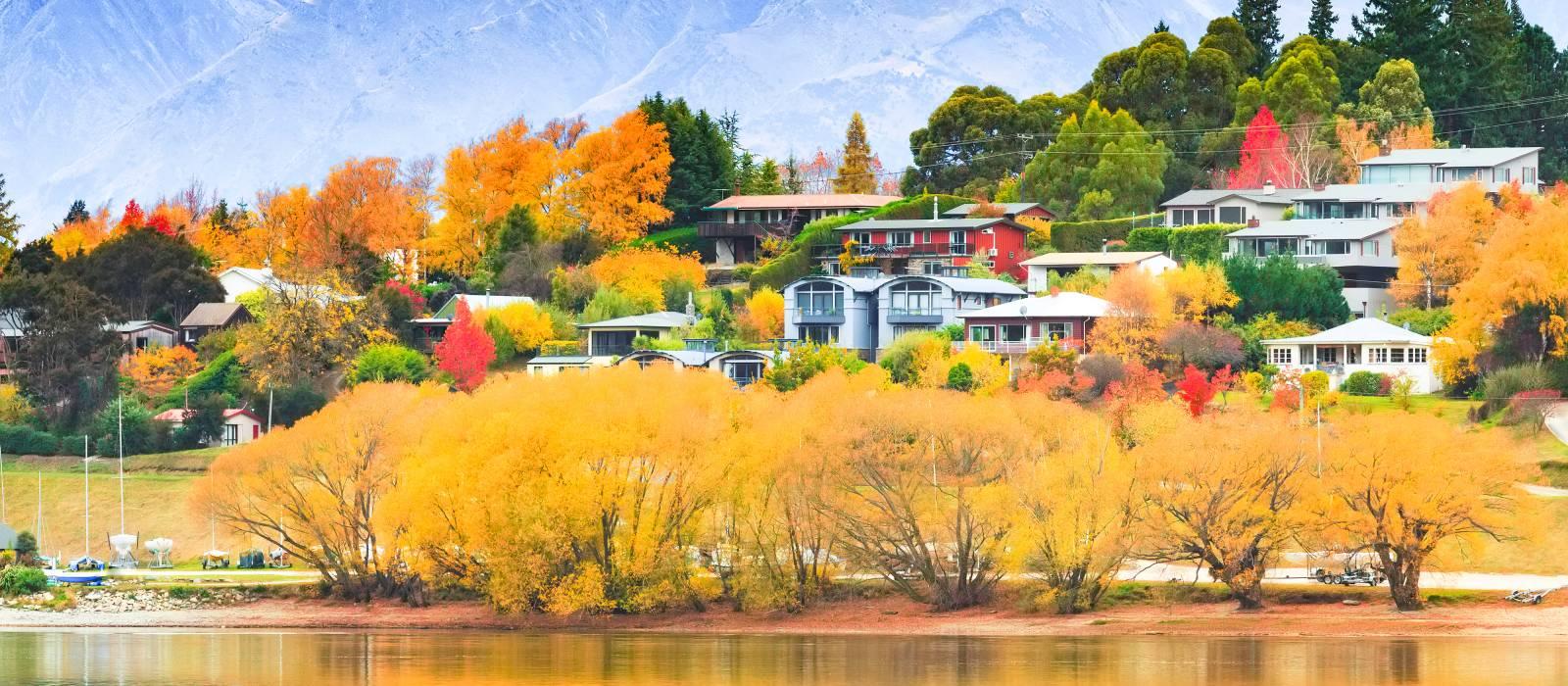 Road Trip: Luxury New Zealand Tour Trip 1