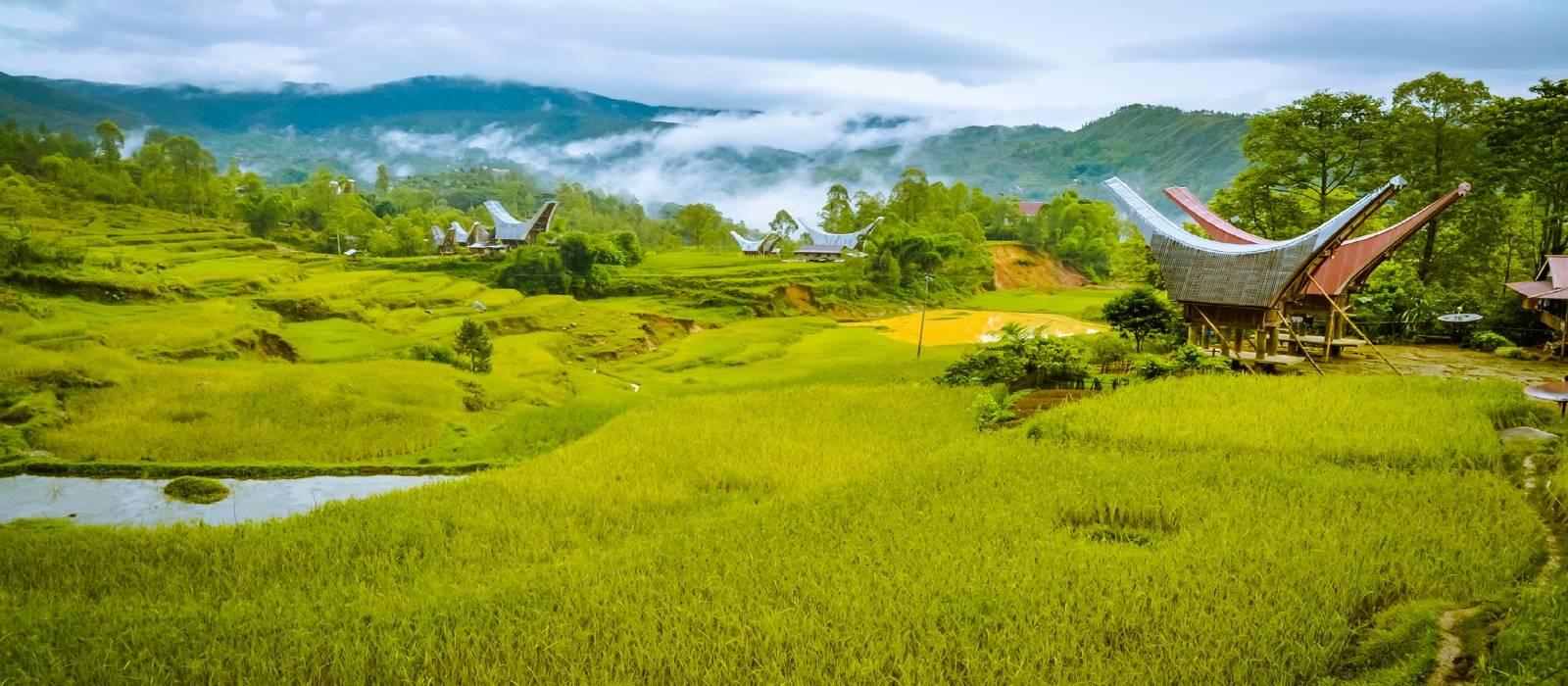 Indonesien – suHöhepunkte von Sulawesi und Sumatra Urlaub 1