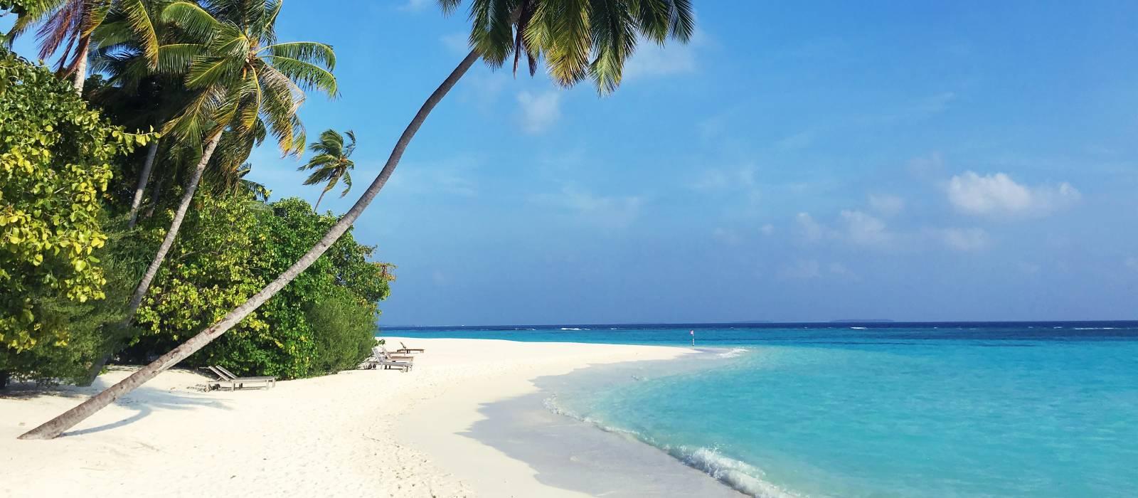 Maldives: Barefoot Luxury Tour Trip 1