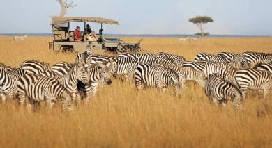 Empfohlene Individualreise, Rundreise: Kenia und Sansibar – Safaris und Strände