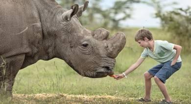 Example private tour: Kenya Safari and Zanzibar