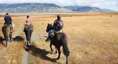 Empfohlene Individualreise, Rundreise: Südamerika Rundreise – die ganze Schönheit des Subkontinents